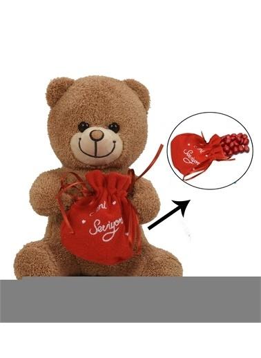 Sole Sevgiliye Özel, Çikolatası ile Romantik Peluş Ayı-30 cm Renkli